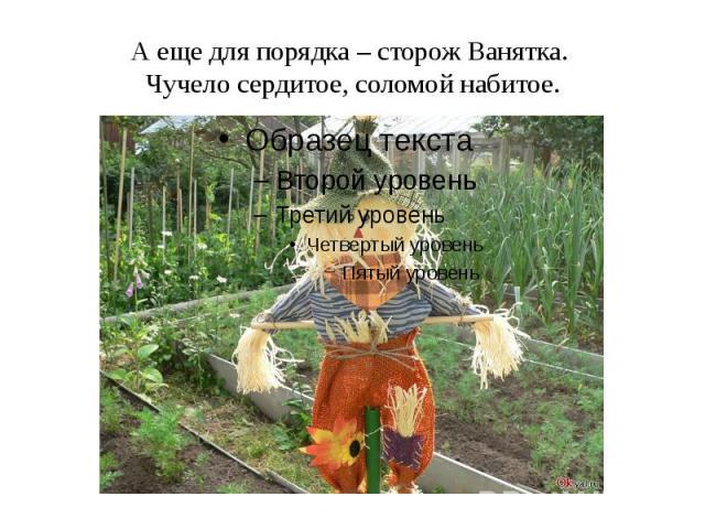 Пугало огород своими руками