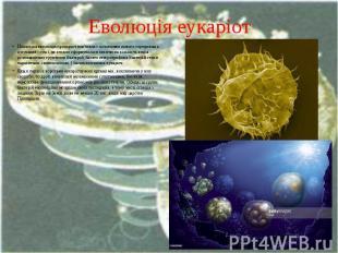 Еволюція еукаріот Подальша еволюція прокаріот пов'язана з освоєнням нового серед