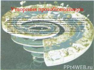 Утворення протобіополімерів 3. Утворення комплексів білків і нуклеїнових кислот,