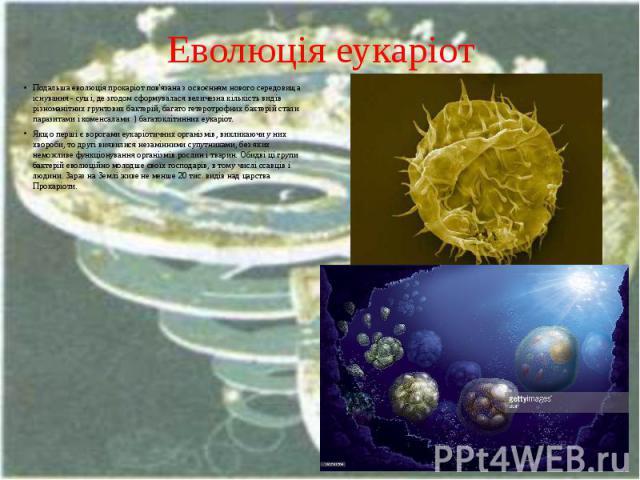 Еволюція еукаріот Подальша еволюція прокаріот пов'язана з освоєнням нового середовища існування - суші, де згодом сформувалася величезна кількість видів різноманітних грунтових бактерій, багато гетеротрофних бактерій стали паразитами і коменсалами )…