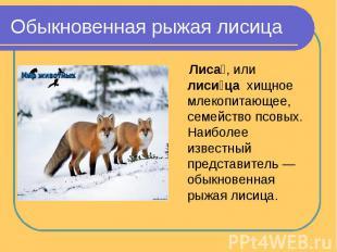 Презентация на тему лиса