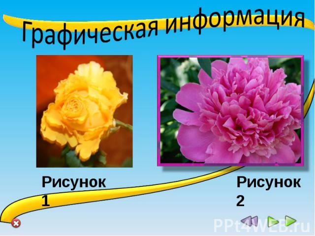 информация рисунок:
