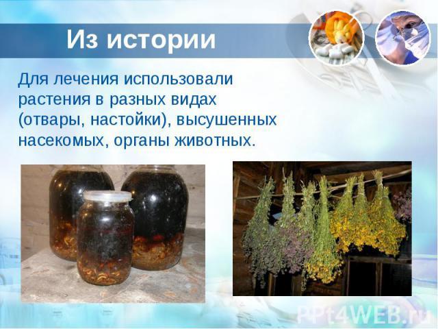 Из истории Для лечения использовали растения в разных видах (отвары, настойки), высушенных насекомых, органы животных.