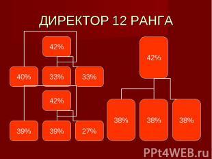 ДИРЕКТОР 12 РАНГА