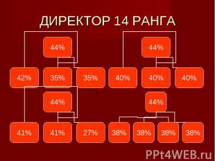 ДИРЕКТОР 14 РАНГА