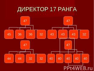 ДИРЕКТОР 17 РАНГА