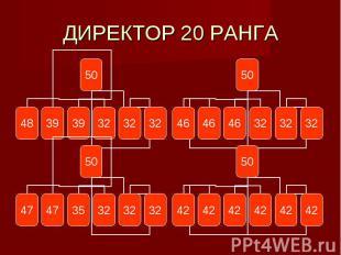 ДИРЕКТОР 20 РАНГА