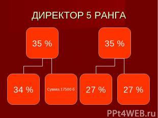 ДИРЕКТОР 5 РАНГА