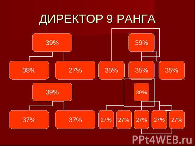 ДИРЕКТОР 9 РАНГА