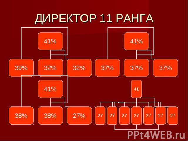 ДИРЕКТОР 11 РАНГА