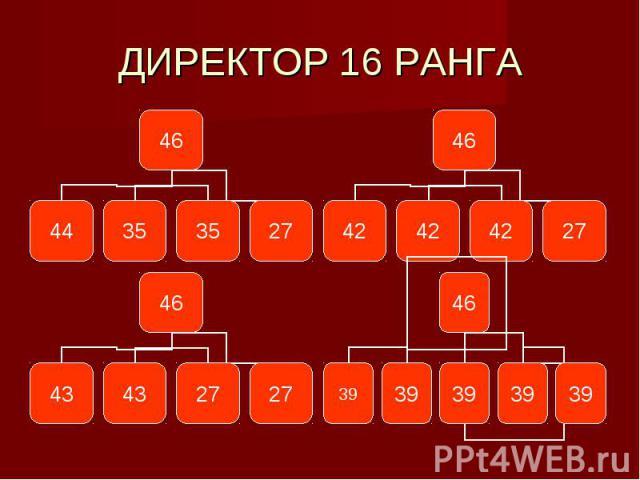ДИРЕКТОР 16 РАНГА