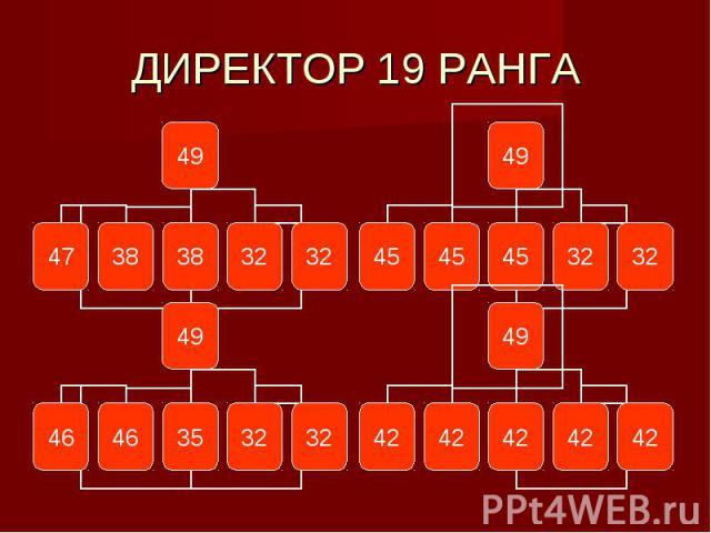 ДИРЕКТОР 19 РАНГА