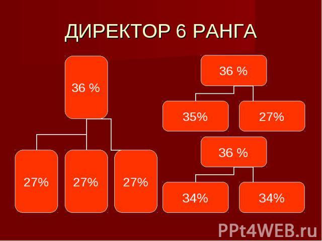 ДИРЕКТОР 6 РАНГА