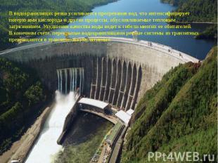 В водохранилищах резко усиливается прогревание вод, что интенсифицирует потерю и