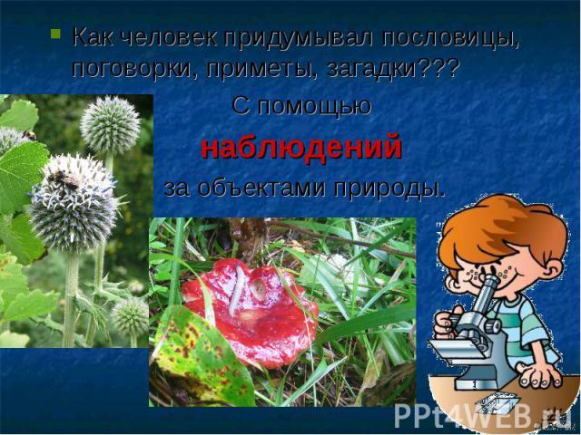 Окр.Мир 1 Класс.Занкова.Природа-Первый Учебник Человека