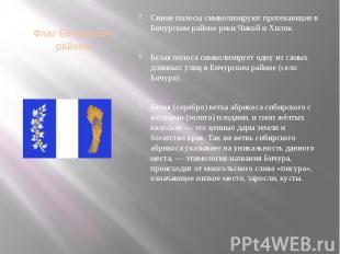 Флаг Бичурского района