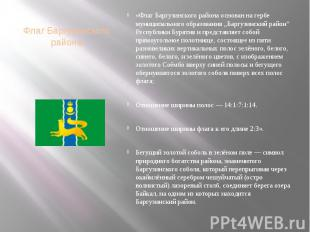 Флаг Баргузинского района