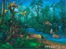 Тропические леса 2 класс