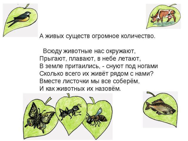 сколько живых существ на картинке