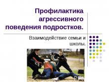 Профилактика агрессивного поведения подростков