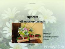 """Проект """"В поисках лета"""""""