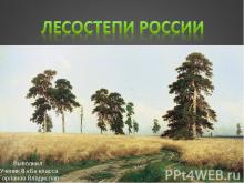 Лесостепи России