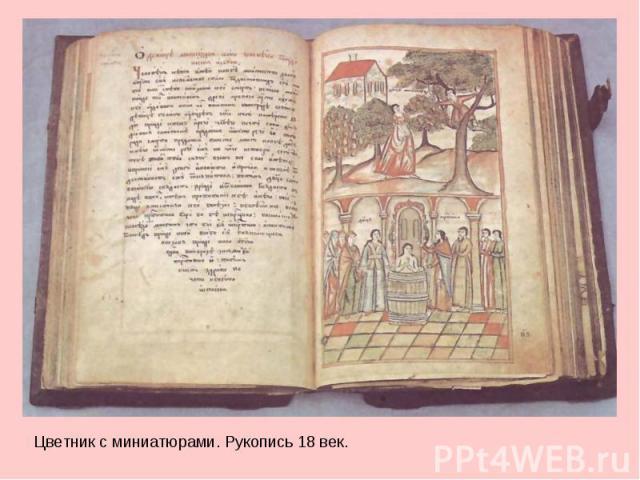 Цветник вместе с миниатюрами. Рукопись 08 век.