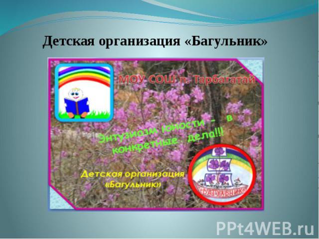 Детская организация «Багульник» Детская организация «Багульник»