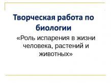 Роль испарения в жизни человека, растений и животных