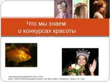 Что мы знаем о конкурсах красоты