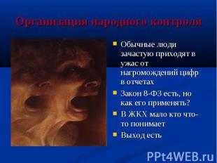 Организация народного контроля Обычные люди зачастую приходят в ужас от нагромож