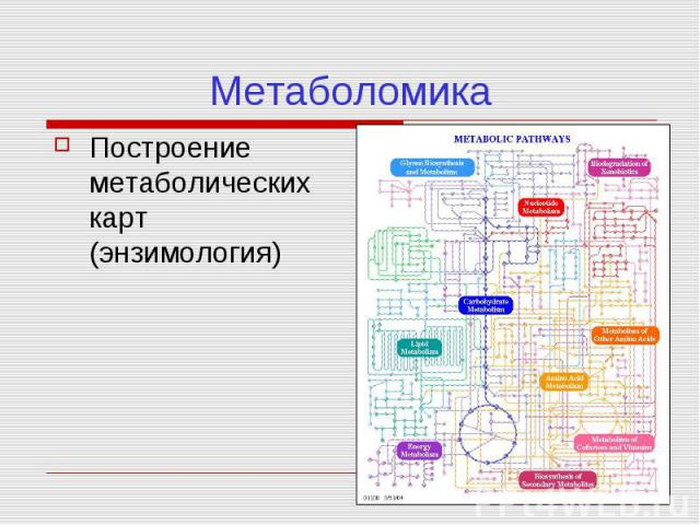 Энзимология