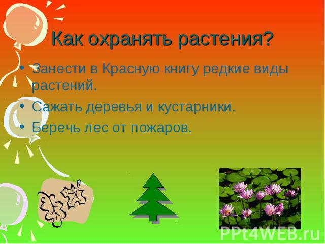 Как сделать книжка малышка берегите растения