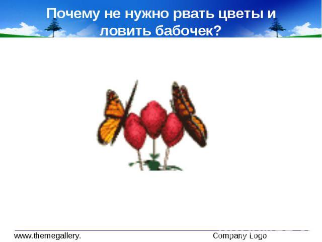 конспект окр мир 1 класс почему мы не будем рвать цветы и ловить бабочек