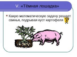 Какую математическую задачу решает свинья, подрывая куст картофеля Какую математ