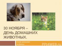 30 ноября – день домашних животных