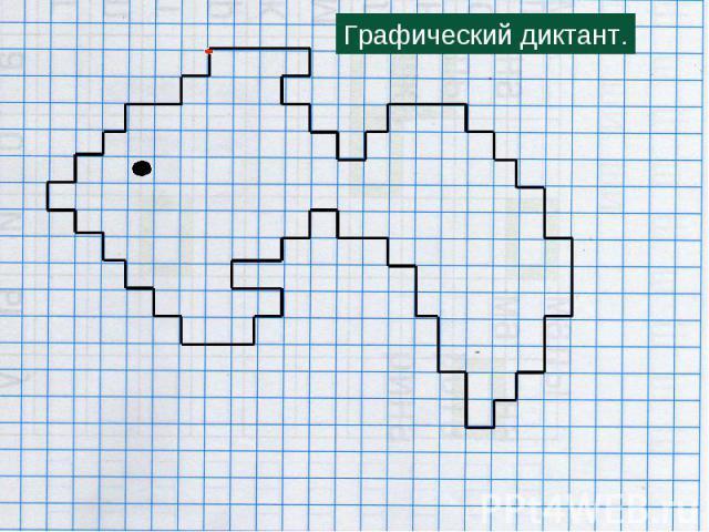 Как сделать графический диктант по холодовой