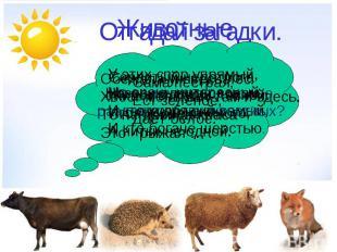 Тему животные дикие и домашние 2 класс