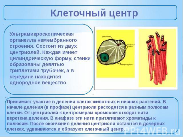 Органелла
