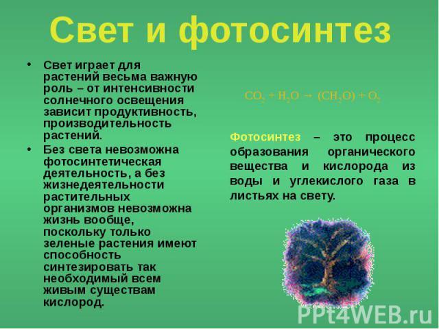 svetu-imeyut-foto
