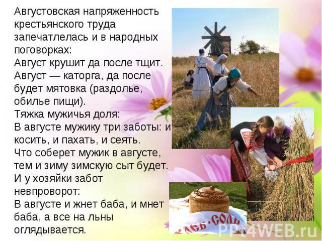 Пословицы о жизни крестьянина