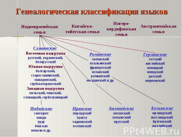 Чувашский язык относится к тюркской группе алтайской языковой семьи
