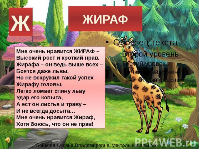 ЖИРАФМне очень нравится ЖИРАФ –Высокий рост и кроткий нрав.Жирафа – он ведь выше всех –Боятся даже львы.Но не вскружил такой успехЖирафу головы.Легко ломает спину львуУдар его копыта,А ест он листья и траву –И не всегда досыта…Мне очень нравится Жир…