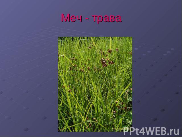 Змеи ленинградской области