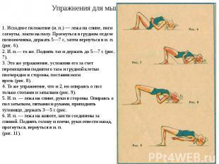 Упражнения для мышц спины 1. Исходное положение (и. п.) — лежа на спине, ноги со