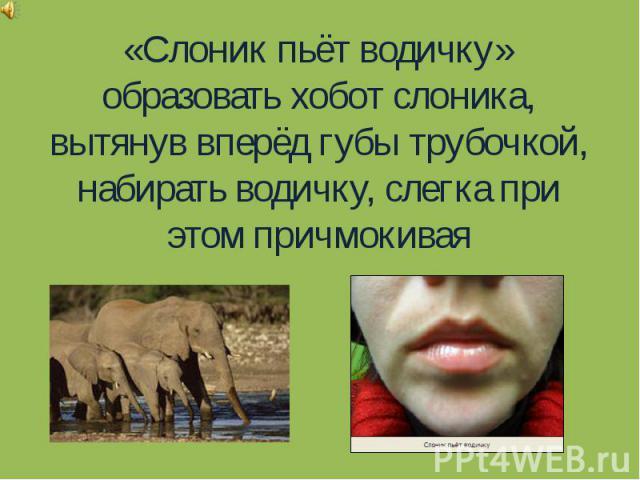 «Слоник пьёт водичку»образовать хобот слоника, вытянув вперёд губы трубочкой, набирать водичку, слегка при этом причмокивая