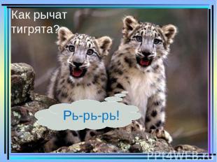 Как рычат тигрята? Рь-рь-рь!