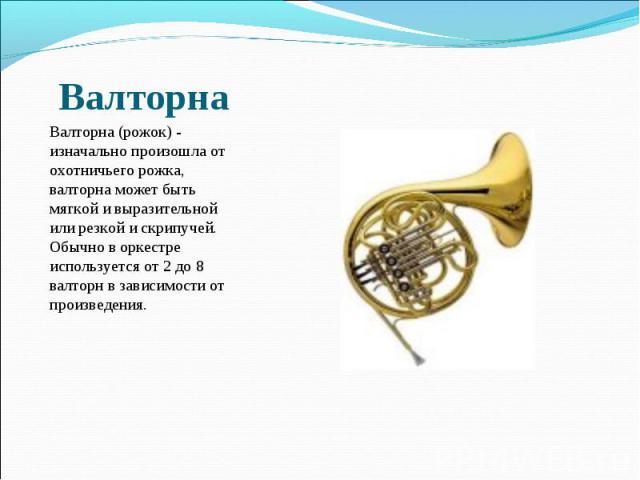 Валторна (рожок) - изначально произошла от охотничьего рожка, валторна может быть мягкой и выразительной или резкой и скрипучей. Обычно в оркестре используется от 2 до 8 валторн в зависимости от произведения.
