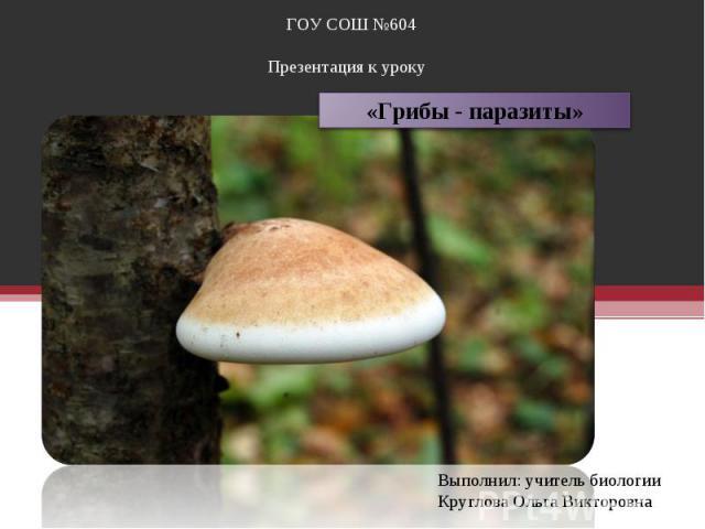 грибы паразиты в жизни человека