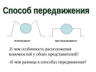 Способ передвижения-В чем особенность расположения конечностей у обоих представи